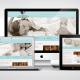 Ultrasound Web Design Portfolio Example
